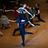 la-dama-delle-camelie_la-dame-aux-camelias_chopin_John-Neumeier_massimo-avenali_emilio-maggi_focusart_photography_dance_danza_balletto_ballet_fotografia_palais-garnier_paris-15