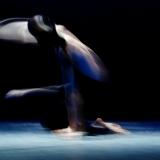 focus-art_pescara_montesilvano_danza_emilio-maggi_massimo-avenali_fotografo_dance_photography_mostra_frazioni_aurum-33