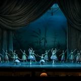 le-corsaire_opera-di-roma_teatro-costanzi_alexei-baklan_jose-carlos-martinez_focus-art-dance-photography_rebecca-bianchi_massimo-avenali_emilio-maggi_foto_danza-25