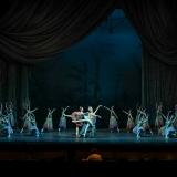 le-corsaire_opera-di-roma_teatro-costanzi_alexei-baklan_jose-carlos-martinez_focus-art-dance-photography_rebecca-bianchi_massimo-avenali_emilio-maggi_foto_danza-26