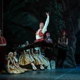 le-corsaire_opera-di-roma_teatro-costanzi_alexei-baklan_jose-carlos-martinez_focus-art-dance-photography_rebecca-bianchi_massimo-avenali_emilio-maggi_foto_danza-33