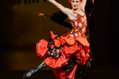 cinderella_nureyev_emilio-maggi_massimo-avenali_focusart_danza_dance_danse_ballet_opera-paris_garnier_bastille_parigi_fotografo_foto_classica-19