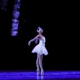 versiliana_focusart_emilio-maggi_massimo-avenali_opera-parigi_paris_sofia-rosolini_danza_danse_dance_photography_foto_classica_dancephotography-18